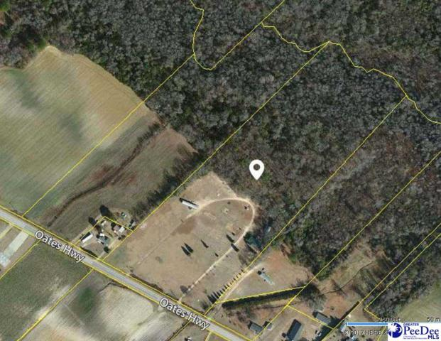 6225 Oates Highway, Timmonsville, SC 29161 (MLS #134200) :: RE/MAX Professionals