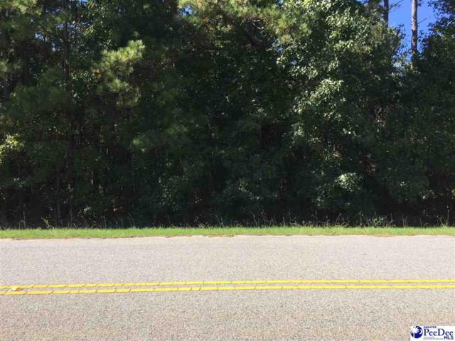 Rowe Drive, Sumerton, SC 29148 (MLS #134417) :: RE/MAX Professionals