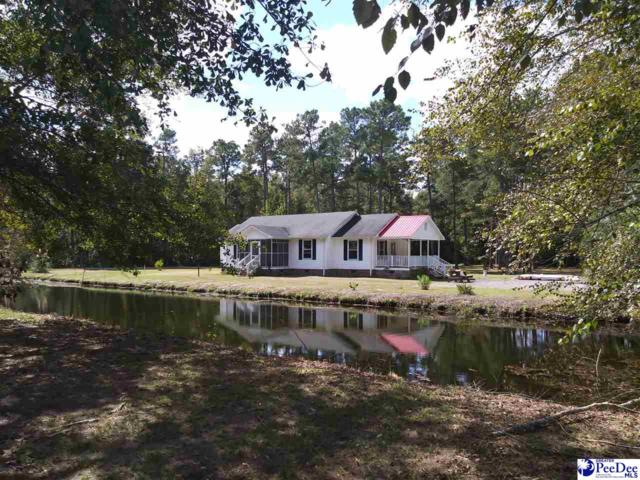 1837 Cale Yarborough Hwy, Timmonsville, SC 29161 (MLS #134671) :: RE/MAX Professionals