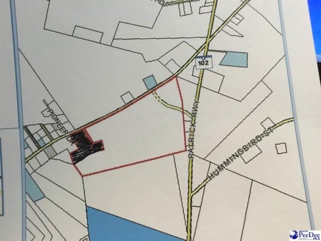 E Old Camden Road, Hartsville, SC 29550 (MLS #134675) :: RE/MAX Professionals