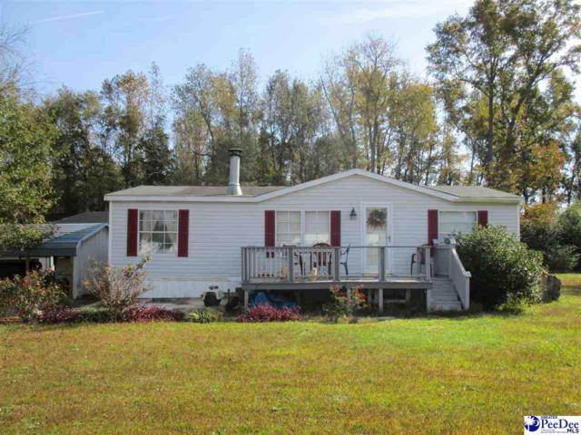 2525 Gee Valley Dr., Timmionville, SC 29161 (MLS #134727) :: RE/MAX Professionals