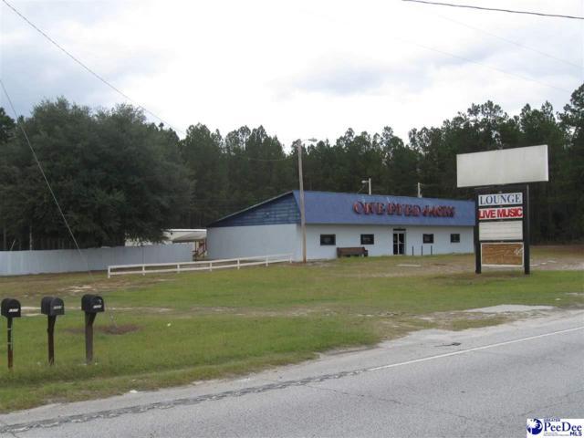 1527 Highway 177, Wallace, SC 29596 (MLS #134729) :: RE/MAX Professionals