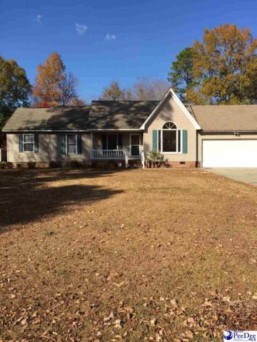 731 Woodcreek Drive, Hartsville, SC 29550 (MLS #134861) :: RE/MAX Professionals