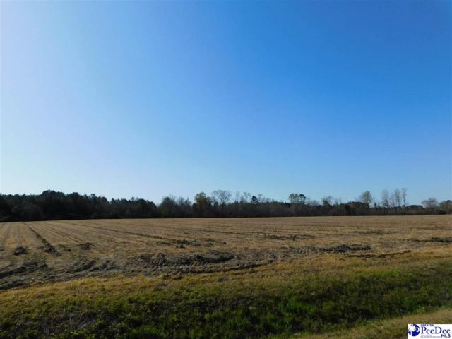 809 Timmons Road, Timmonsville, SC 29161 (MLS #134962) :: RE/MAX Professionals