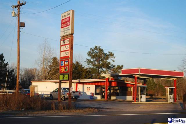 10295 Lynches River Rd, Lynchburg, SC 29080 (MLS #135122) :: RE/MAX Professionals