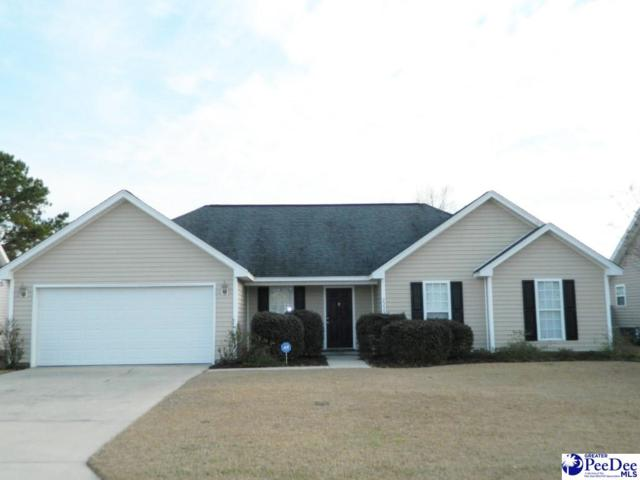 2229 Stepping Stone Drive, Effingham, SC 29541 (MLS #135362) :: RE/MAX Professionals