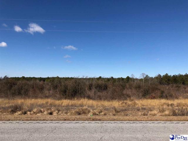 17.95 +/- Acres Highway 177, Wallace, SC 29596 (MLS #135480) :: RE/MAX Professionals