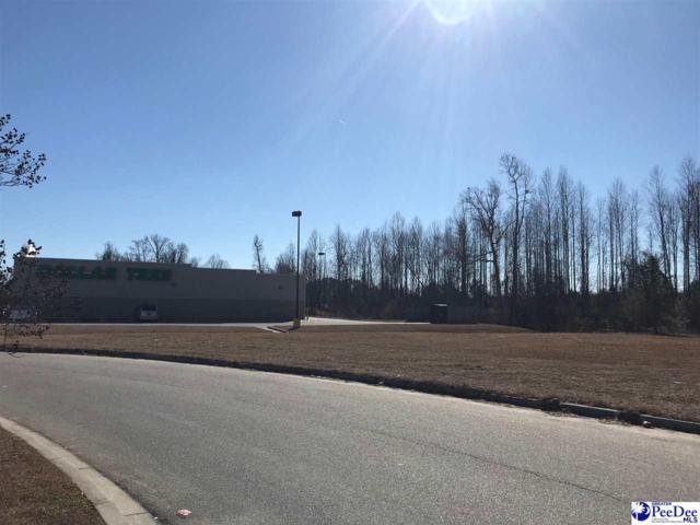 TBD Enterprise Road, Dillon, SC 29536 (MLS #135552) :: RE/MAX Professionals