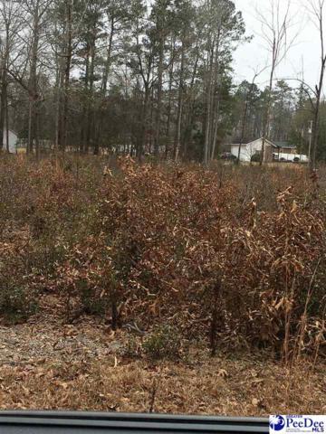 Dogwood Acres Dr, Hartsville, SC 29550 (MLS #135716) :: RE/MAX Professionals