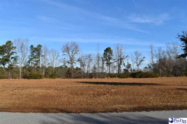 746 Tempe Avenue, Pamplico, SC 29583 (MLS #135769) :: Crosson and Co