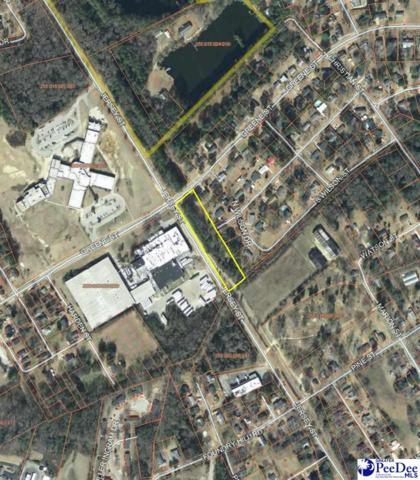 N Wilson Drive, Cheraw, SC 29520 (MLS #135878) :: RE/MAX Professionals