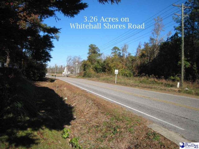 Whitehall Shores Road, Florence, SC 29501 (MLS #136032) :: RE/MAX Professionals