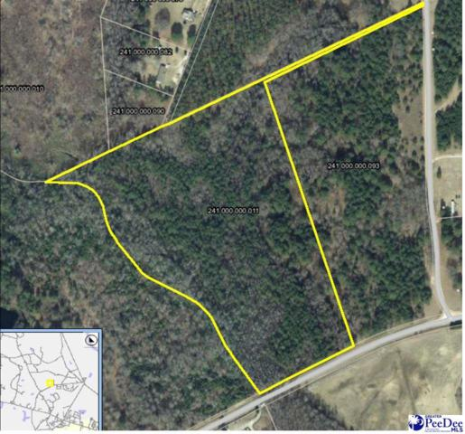 21.3 acres Midway Rd, Cheraw, SC 29520 (MLS #136324) :: RE/MAX Professionals