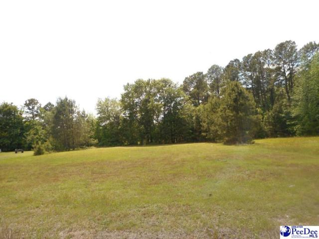 Lot 7 Harkless Court, Timmonsville, SC 29161 (MLS #136476) :: RE/MAX Professionals