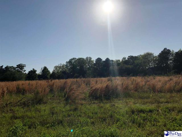 Mclaurin Drive (Lot # 6), Florence, SC 29501 (MLS #136530) :: Coldwell Banker McMillan and Associates