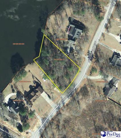 107 Chatham Lake Ln, Cheraw, SC 29520 (MLS #136795) :: RE/MAX Professionals
