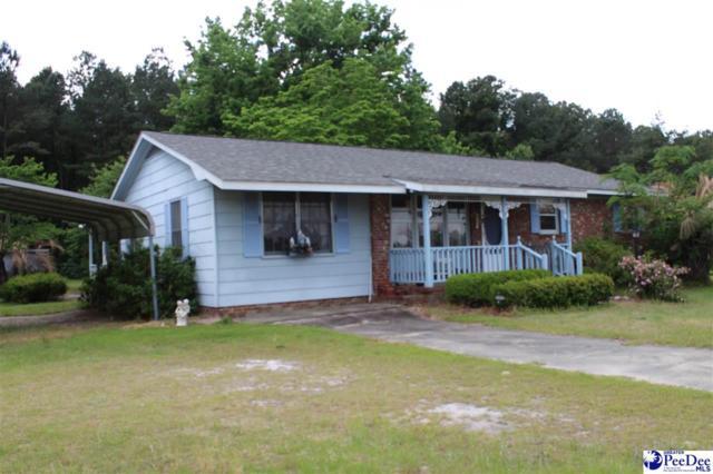 820 Oleander Drive, Darlington, SC 29532 (MLS #136892) :: RE/MAX Professionals