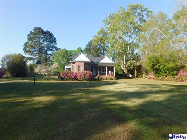 2954 Creek Road, Timmonsville, SC 29161 (MLS #136893) :: RE/MAX Professionals