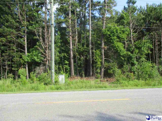 15 & 16 Tracts, Paul Jones Rd, Florence, SC 29501 (MLS #137227) :: RE/MAX Professionals
