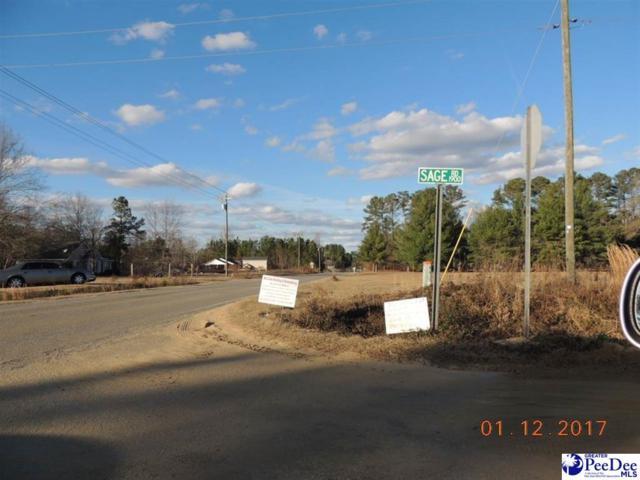 2519 Sage Road, Effingham, SC 29541 (MLS #137375) :: RE/MAX Professionals