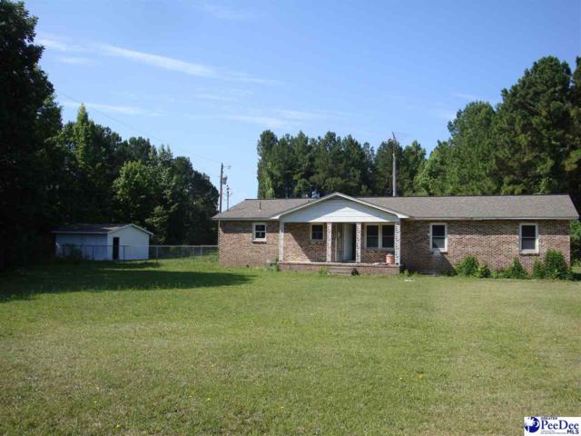 2049 E Seven Pines, Darlington, SC 29532 (MLS #137404) :: RE/MAX Professionals