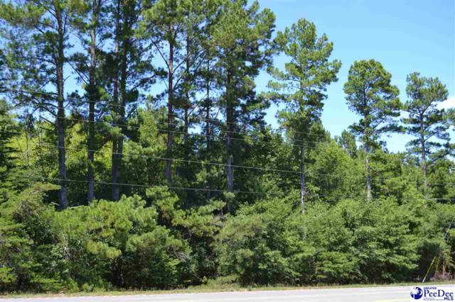 Lot 12 Black A Chestefield Hwy, Cheraw, SC 29520 (MLS #137646) :: RE/MAX Professionals
