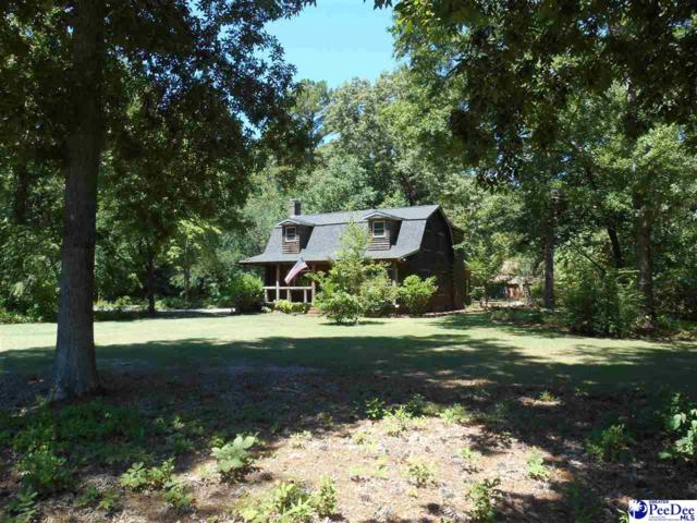 2467 Oliver Road, Florence, SC 29161 (MLS #137647) :: RE/MAX Professionals