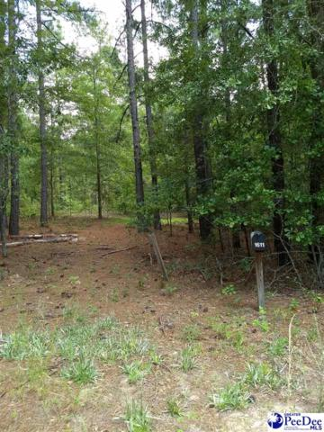 1611 Beverly Ln, Manning, SC 29102 (MLS #137958) :: RE/MAX Professionals