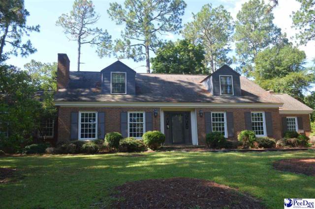 2103 Vista Vue Drive, Hartsville, SC 29550 (MLS #137998) :: RE/MAX Professionals