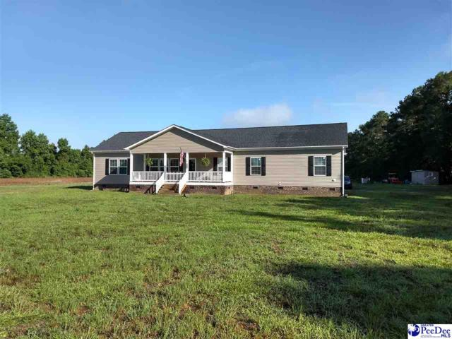 930 Keefe Rd, Pamplico, SC 29583 (MLS #138100) :: RE/MAX Professionals