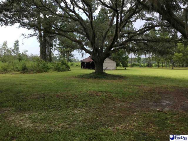 Muddy Creek Rd, Johnsonville, SC 29555 (MLS #138185) :: RE/MAX Professionals