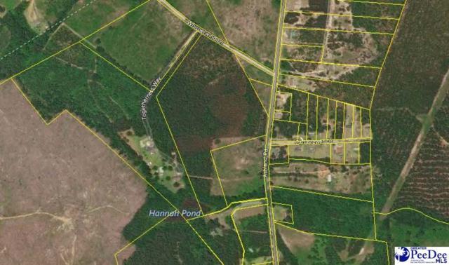 31.5 Acres Ashland Road, Mcbee, SC 29101 (MLS #138530) :: RE/MAX Professionals