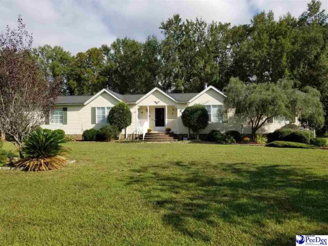 940 White Pond Road, Effingham, SC 29541 (MLS #138695) :: RE/MAX Professionals