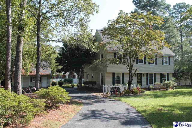 321 Oakdale Drive, Hartsville, SC 29550 (MLS #138725) :: RE/MAX Professionals