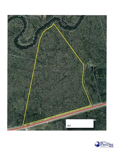 TBD Williamsburg County Highway, Kingstree, SC 29556 (MLS #138874) :: RE/MAX Professionals