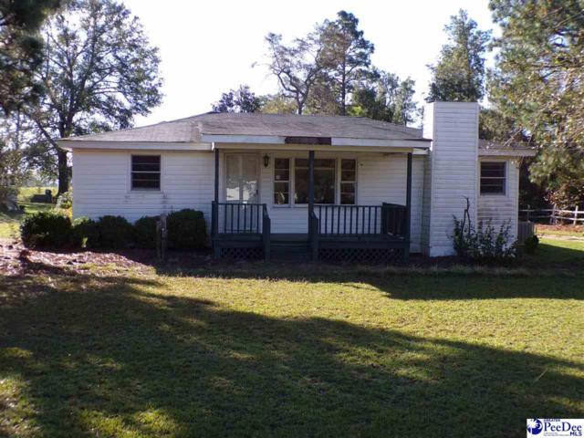 2329 E Old Camden Rd., Hartsville, SC 29550 (MLS #138912) :: RE/MAX Professionals