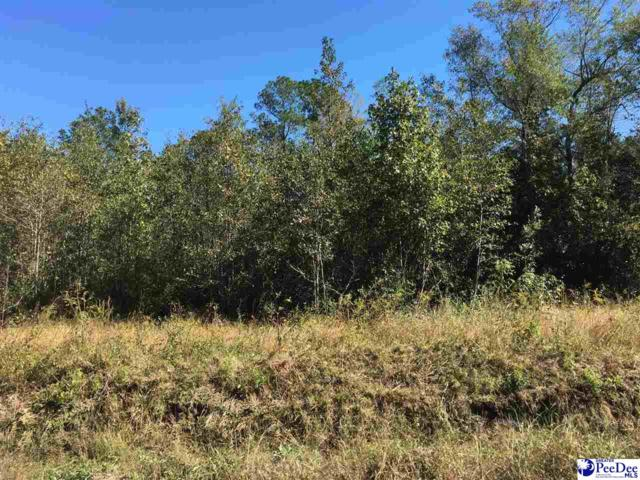 Law Road, Florence, SC 29541 (MLS #138943) :: RE/MAX Professionals