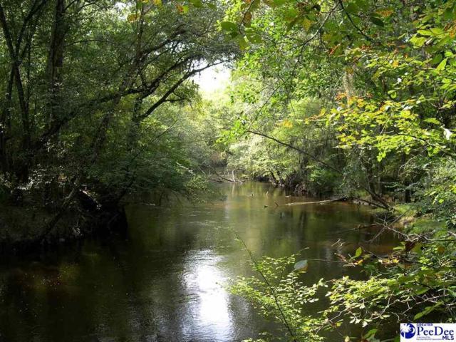 680 E Black Creek, Florence, SC 29506 (MLS #139218) :: RE/MAX Professionals