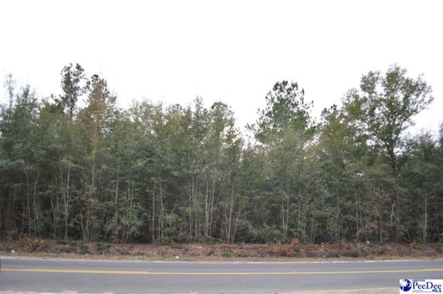 2.1 acres Oakridge Road, Brittons Neck, SC 29546 (MLS #139486) :: Coldwell Banker McMillan and Associates
