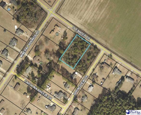 Lot 3A Oleander Drive, Darlington, SC 29532 (MLS #20190354) :: RE/MAX Professionals