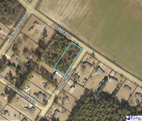 Lot 4A Oleander Drive, Darlington, SC 29532 (MLS #20190355) :: RE/MAX Professionals