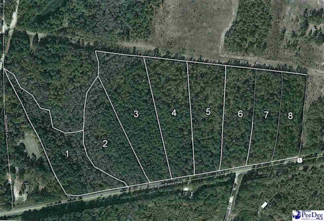 1990 Jefferson Davis Highway Lot 8, Cassatt, SC 29032 (MLS #20190939) :: RE/MAX Professionals