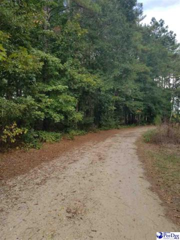 Two Lots Vintage Drive, Bennettsville, SC 29512 (MLS #20191002) :: RE/MAX Professionals