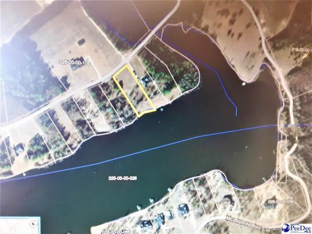 Lot 44 Mclaurin Lake Circle, Dillon, SC 29536 (MLS #20191765) :: RE/MAX Professionals