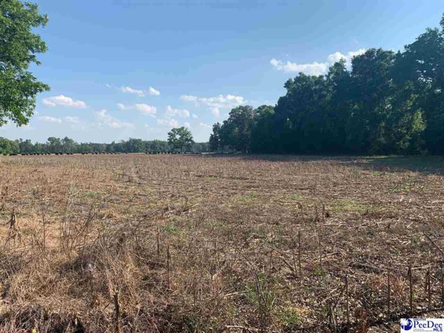 97 acres S 4th St, Hartsville, SC 29550 (MLS #20191866) :: RE/MAX Professionals