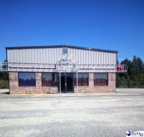 3111 N Highway 301, Hamer, SC 29547 (MLS #20192890) :: RE/MAX Professionals