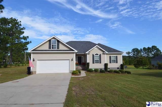 1059 Jessamine Drive, Hartsville, SC 29550 (MLS #20193528) :: RE/MAX Professionals