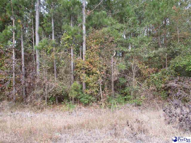 (Tract of Land) Paul Johns Rd., Florence, SC 29501 (MLS #20194105) :: The Latimore Group