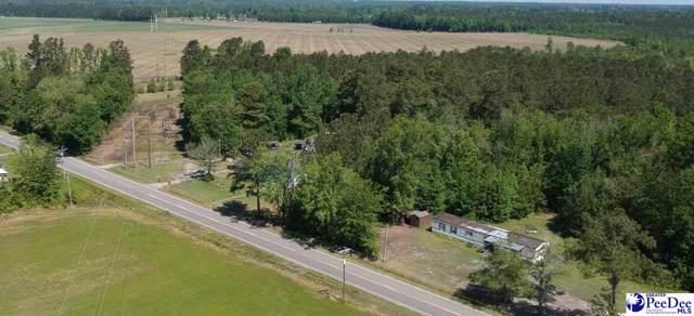 58 acre Penderboro Rd, Marion, SC 29571 (MLS #20194455) :: RE/MAX Professionals