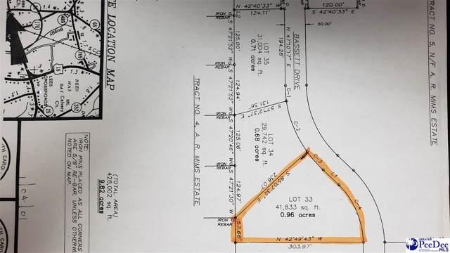 843 Bassett Drive, Hartsville, SC 29550 (MLS #20200370) :: RE/MAX Professionals
